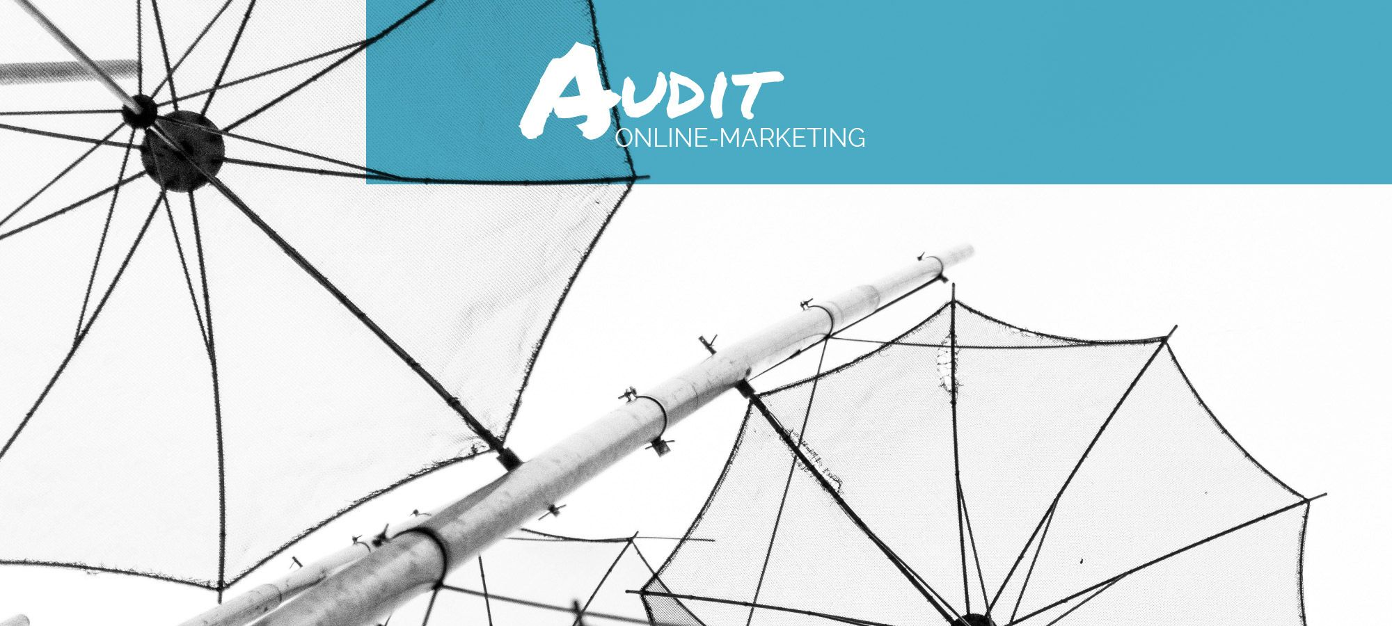 Online-Marketing Audit
